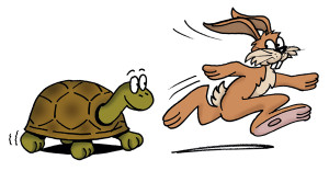 Hare-and-Tortoise-2