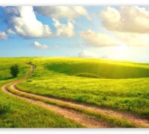 cropped-success-path1